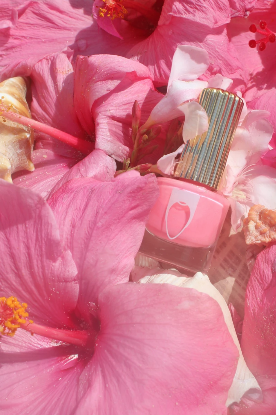 FlossGloss_PlayaDelPink.png